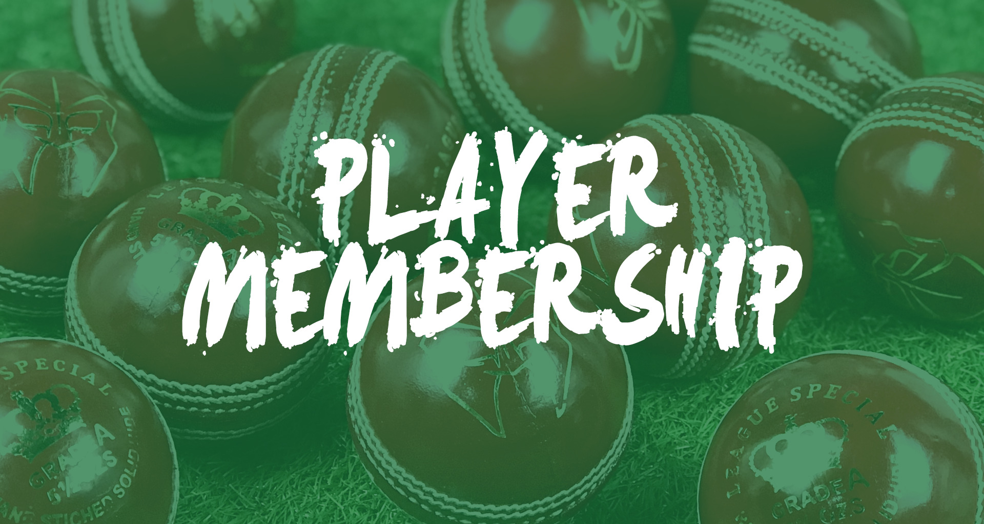 https://wilmslowcricketclub.com/wp-content/uploads/2020/03/Player-Membership.jpg